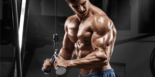10-luchshikh-uprazhneniy-na-triceps.png